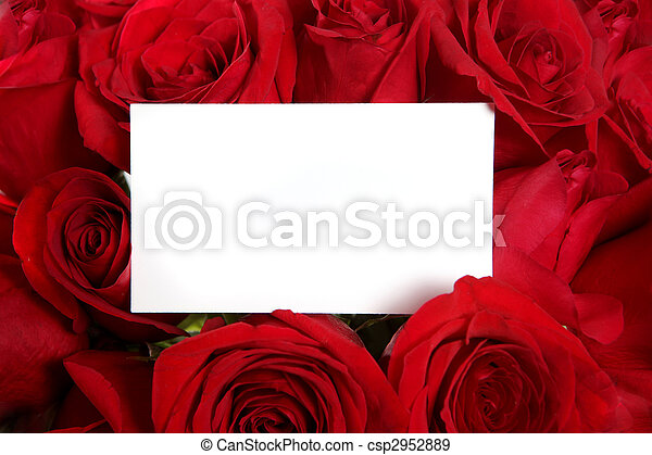 Blank Message Card Surrounded by Red Roses Perfect for Valentine's Day or an Anniversary - csp2952889