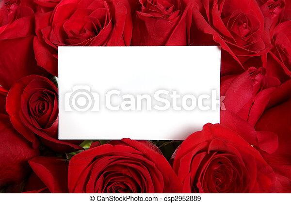 perfeitos, cercado, aniversário, Dia, rosas, vermelho, em branco,  valentine\'s, mensagem, ou, cartão - csp2952889