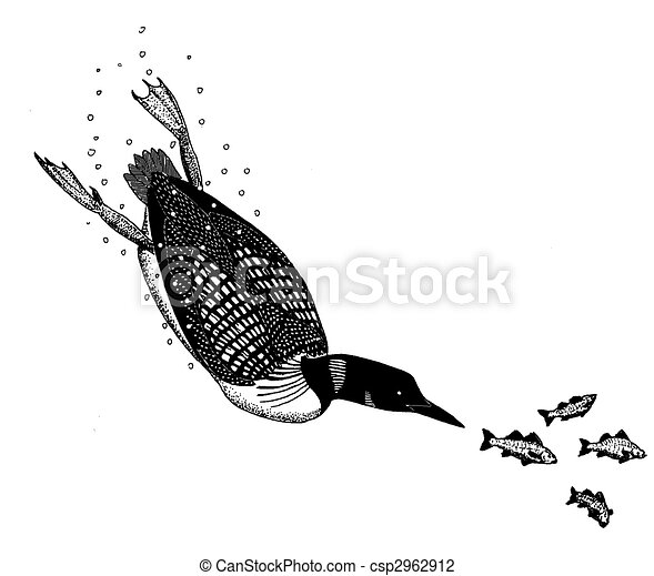 Clip Art of Common Loon - Gavia immer - diving csp2962912 - Search ...