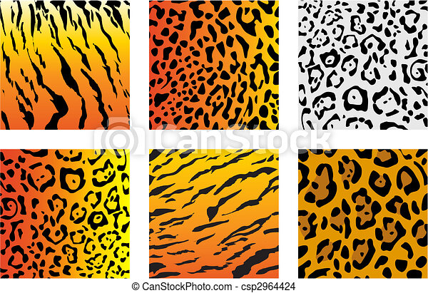 Wildcat fur - csp2964424
