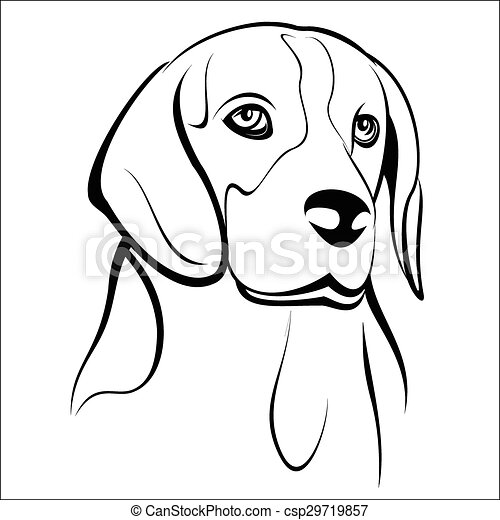 Clipart Vector of Beagle - Vector illustration - Beagle head on a ...