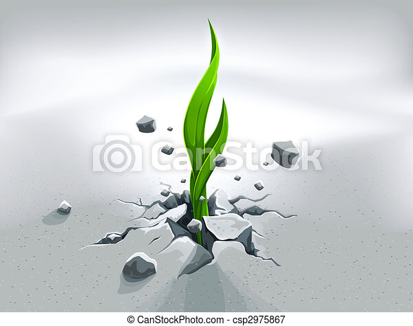 Strong sprout, pushing out through stone ground - csp2975867
