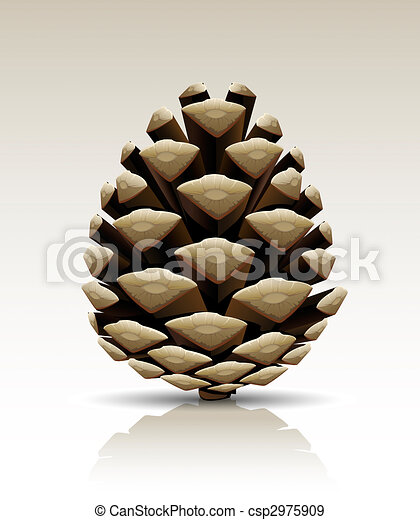stock illustration of pine cone isolated single pine