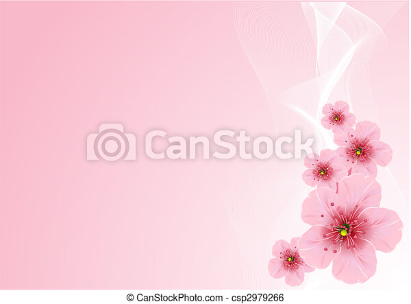 Cherry blossom - csp2979266