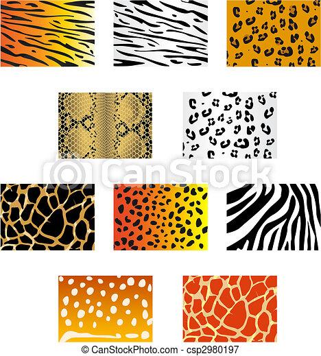 Animal fur and skin - csp2980197