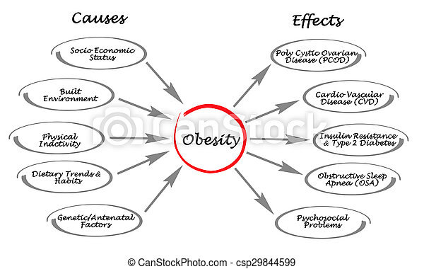 Obesity cause and effects essay