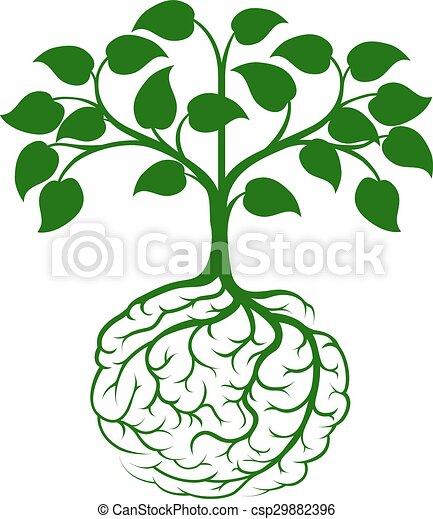 Brain root tree - csp29882396