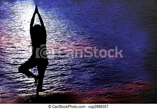 Twilight Yoga - csp2988357