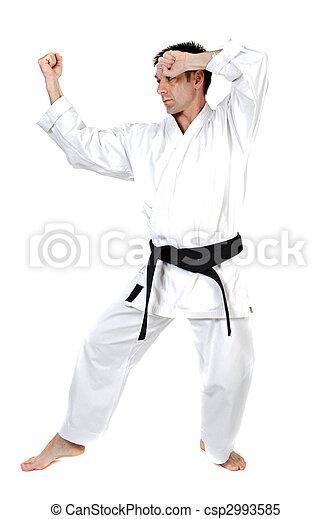 Martial arts stance - csp2993585