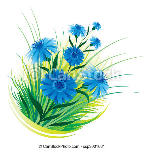 Cornflower and grass - csp3001681
