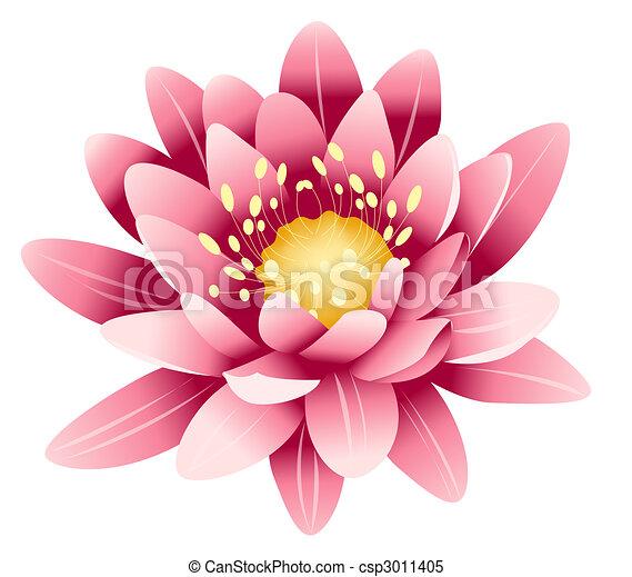 Pink Lotus Drawing Pink Lotus Csp3011405