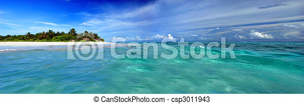 Island in the Maldives - csp3011943