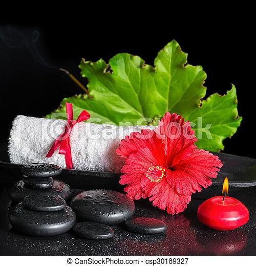 photo de beau, hibiscus, vie, fleur, serviette, roulé, feuille