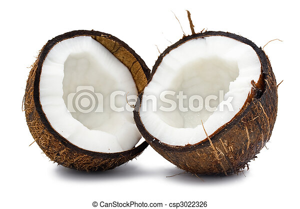 Coconut - csp3022326