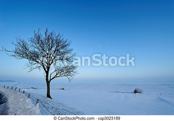 winter landscape in the Netherlands  - csp3023189
