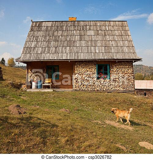 Simple rural house - csp3026782