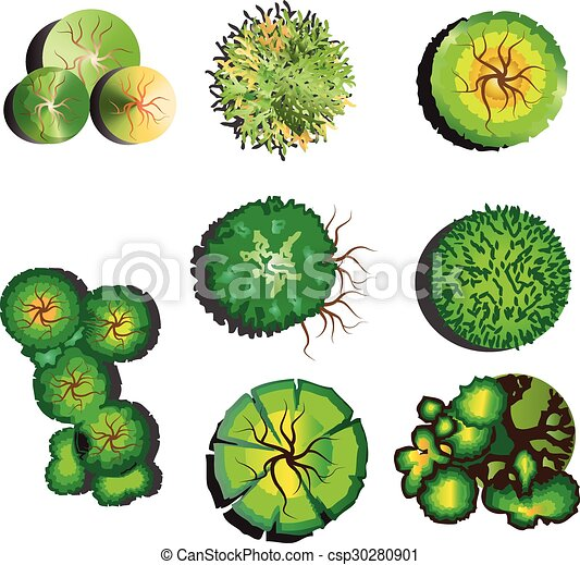 Vector Clipart Of Tree Top View Set 2 Plants