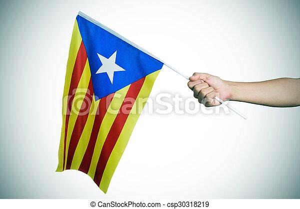 泰罗尼亚人, pro independence, estelada, vignetted, 人 csp