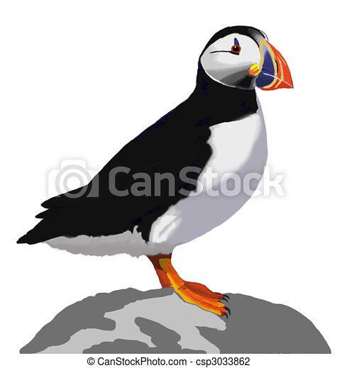 Atlantic Puffin - csp3033862
