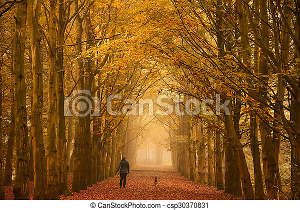 Sunday morning walk in autumn