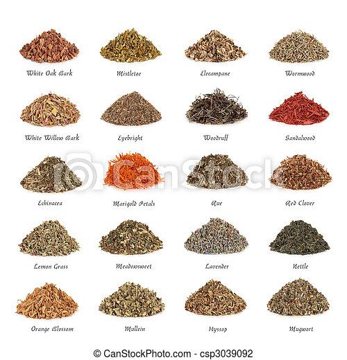 Medicinal and Magical Herbs - csp3039092