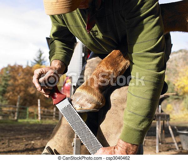 Farrier Filing Horse Hoof - csp3040462