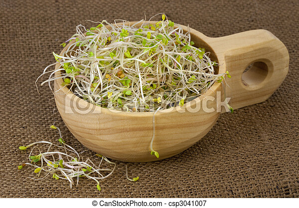 broccoli, radish and clover sprouts in a wooden bowl - csp3041007