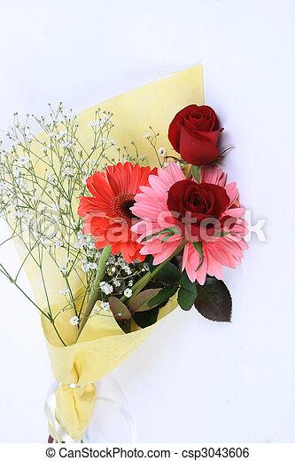 valentine\'s, jour - csp3043606