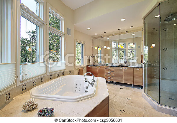 Master bath with large glass shower - csp3056601