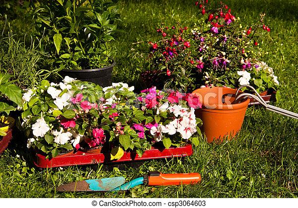 gardening - csp3064603