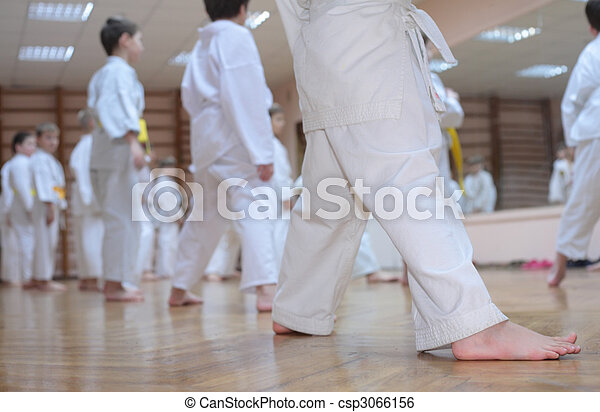 karate boys in sport hall - csp3066156
