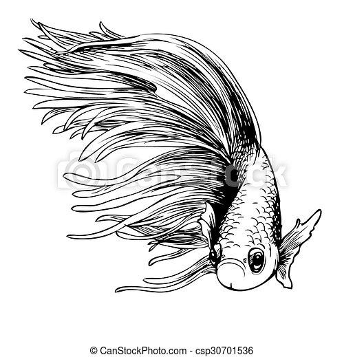 fish - stock illustration, royalty free illustrations, stock clip art ...