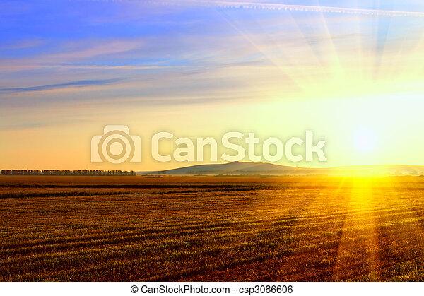 Sunrise in the field - csp3086606