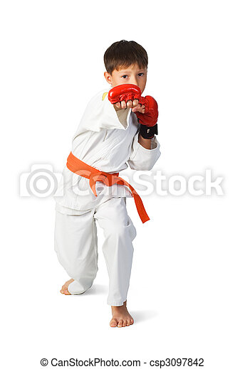 aikido boy - csp3097842