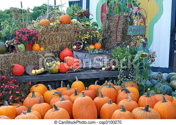Fall  Harvest - csp3100270