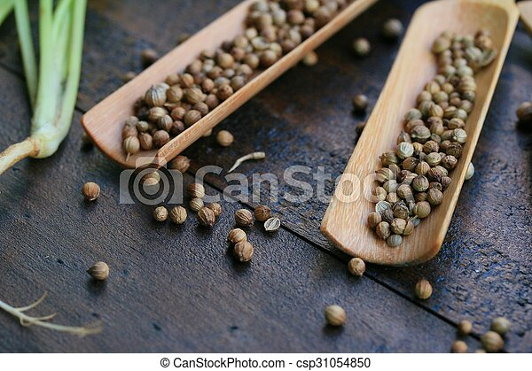 Fresh coriander and dried seeds