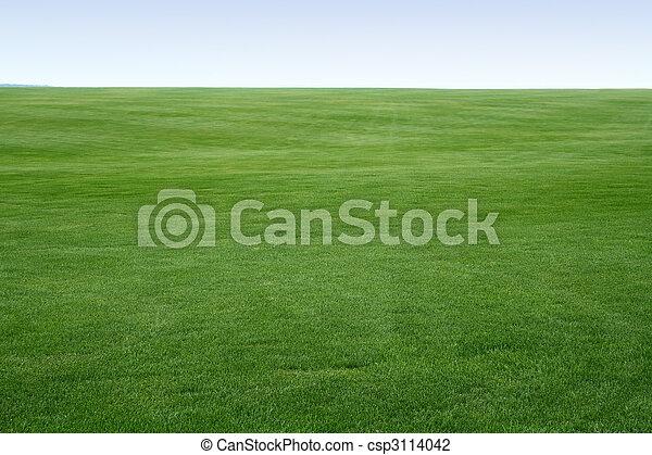endless lawn - csp3114042