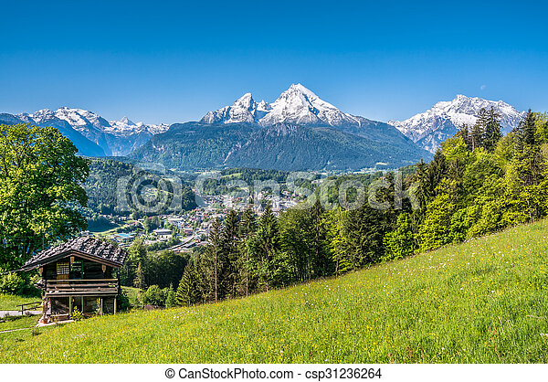Bavarian Alps with beautiful flowers and Watzmann in springtime, Germany - csp31236264