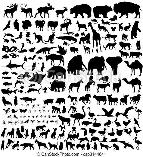 silhouettes, djur, Kollektion - csp3144841
