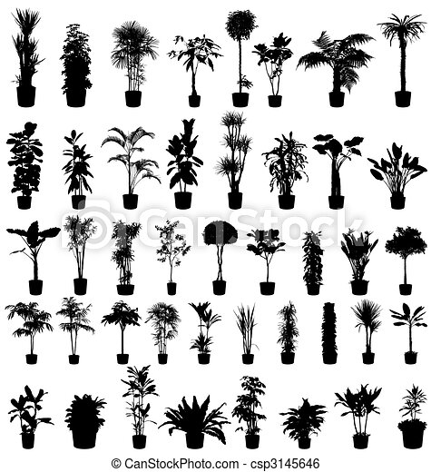 plants silhouettes collection - csp3145646