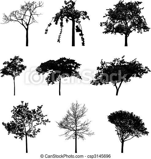 trees silhouettes - csp3145696