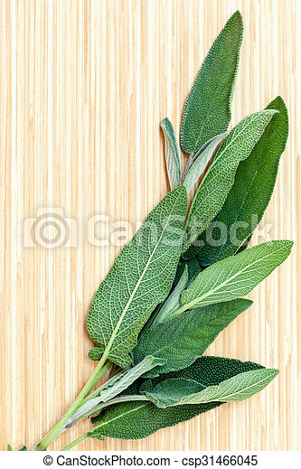 how to use salvia safe