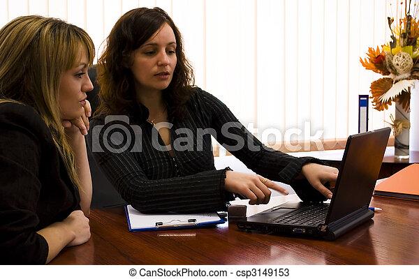businesswomen analyzing - csp3149153