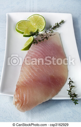 Fish Fillet - csp3162929