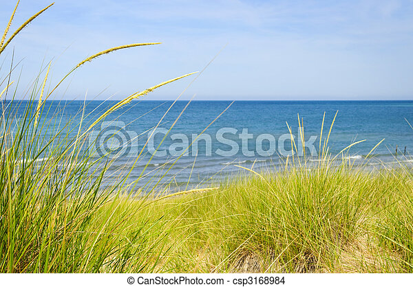 Sand dunes at beach - csp3168984