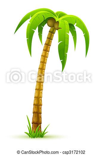 palm tree - csp3172102