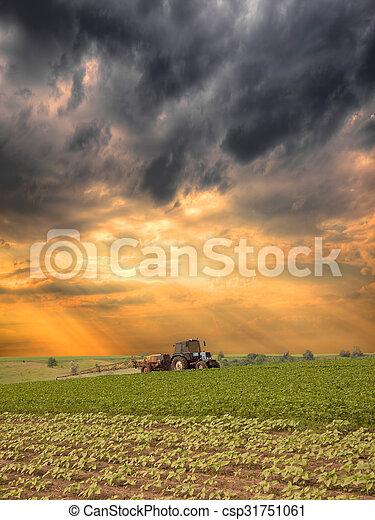 Spraying the field - csp31751061