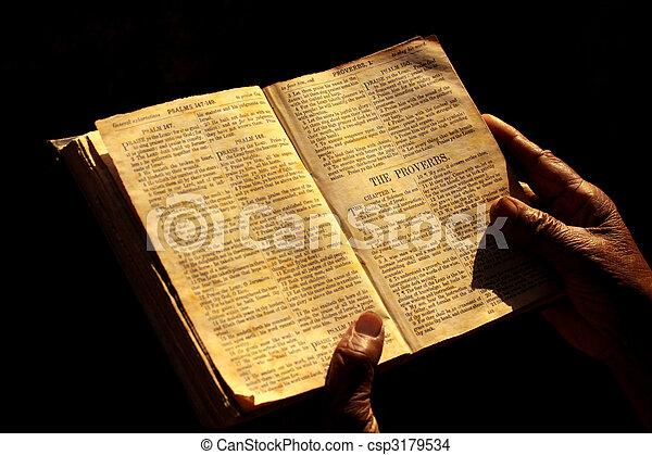 Holy bible - csp3179534