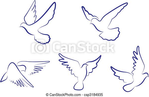 White doves - csp3184935