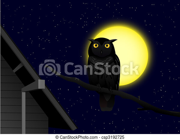 owl in the night - csp3192725